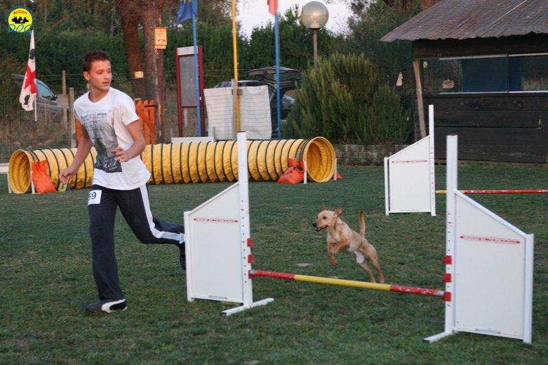 actiondog-020808-09.jpg