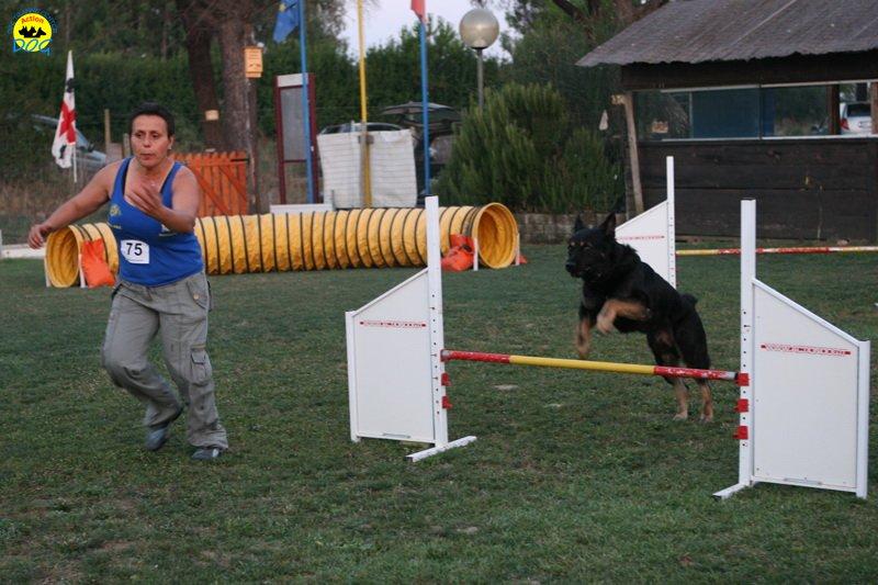 actiondog-020808-16.jpg