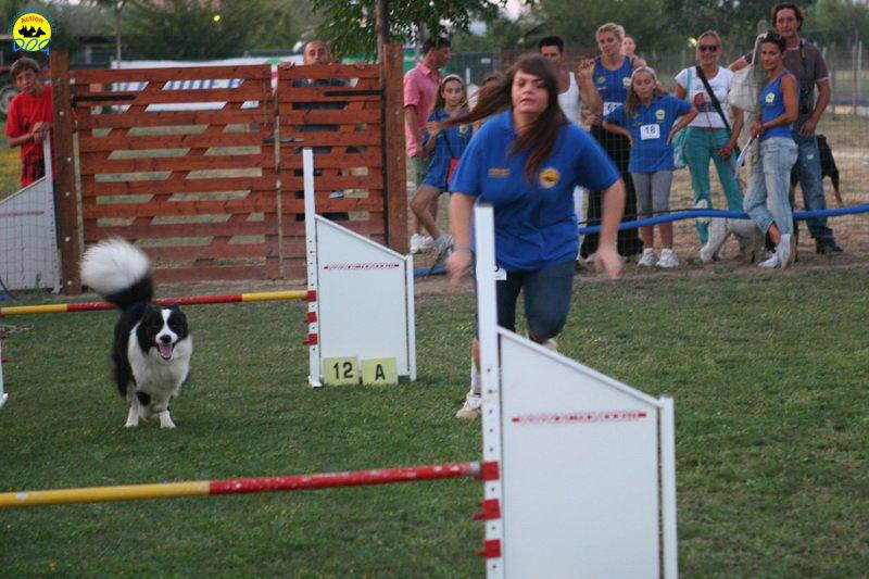 actiondog-020808-17.jpg