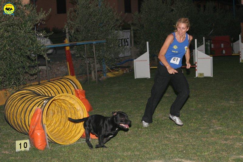 actiondog-020808-19.jpg