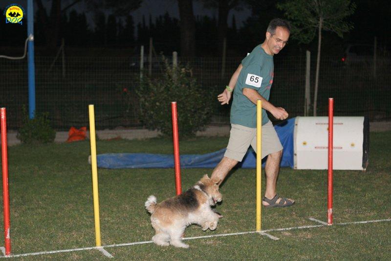 actiondog-020808-20.jpg
