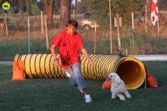 actiondog-020808-05.jpg
