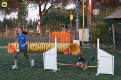actiondog-020808-07.jpg