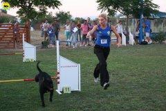 actiondog-020808-11.jpg
