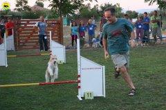 actiondog-020808-13.jpg