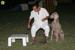 actiondog-020808-26.jpg