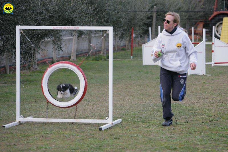 actiondog-29-01-2012-353