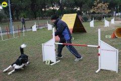 actiondog-29-01-2012-007