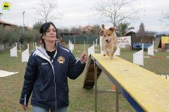 actiondog-29-01-2012-054