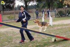 actiondog-29-01-2012-132