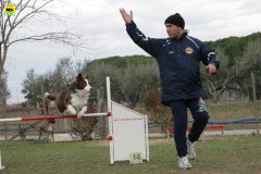 actiondog-29-01-2012-288