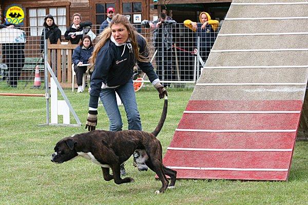 010-agility-dog-cecina-11-04-10