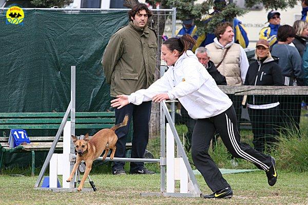 040-agility-dog-cecina-11-04-10