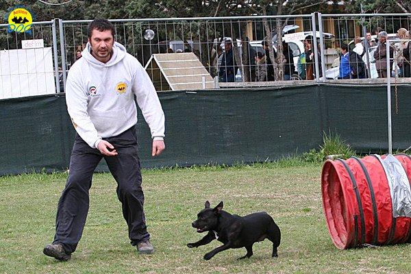 052-agility-dog-cecina-11-04-10