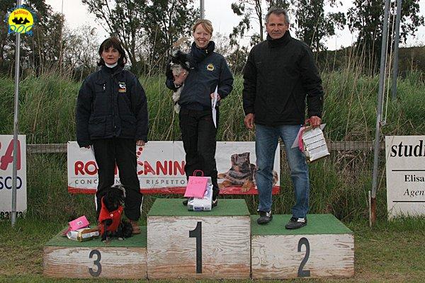 136-agility-dog-cecina-11-04-10