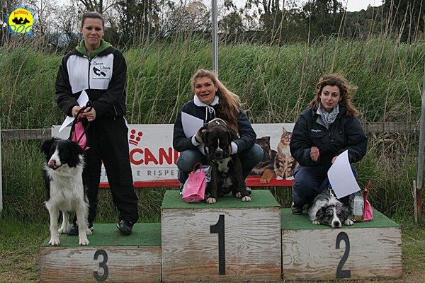 140-agility-dog-cecina-11-04-10