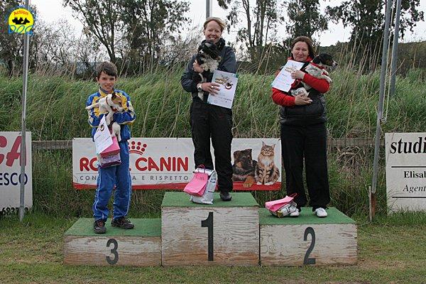 142-agility-dog-cecina-11-04-10