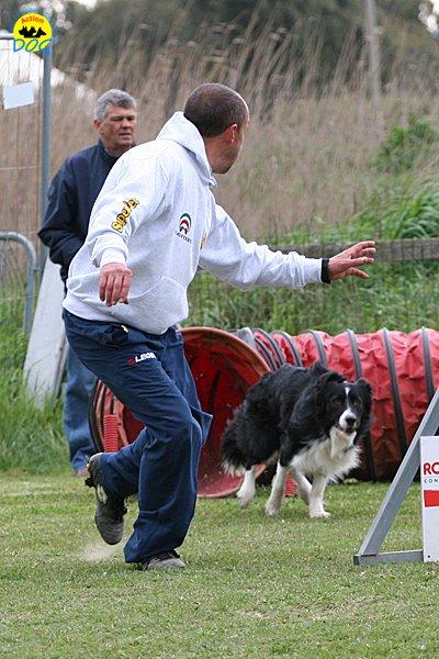 210-agility-dog-cecina-11-04-10