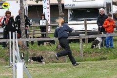 026-agility-dog-cecina-11-04-10