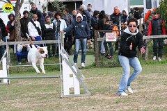 093-agility-dog-cecina-11-04-10