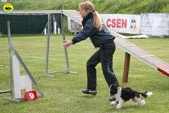124-agility-dog-cecina-11-04-10