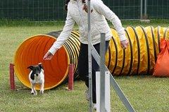 127-agility-dog-cecina-11-04-10