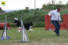 209-agility-dog-cecina-11-04-10