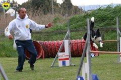 211-agility-dog-cecina-11-04-10