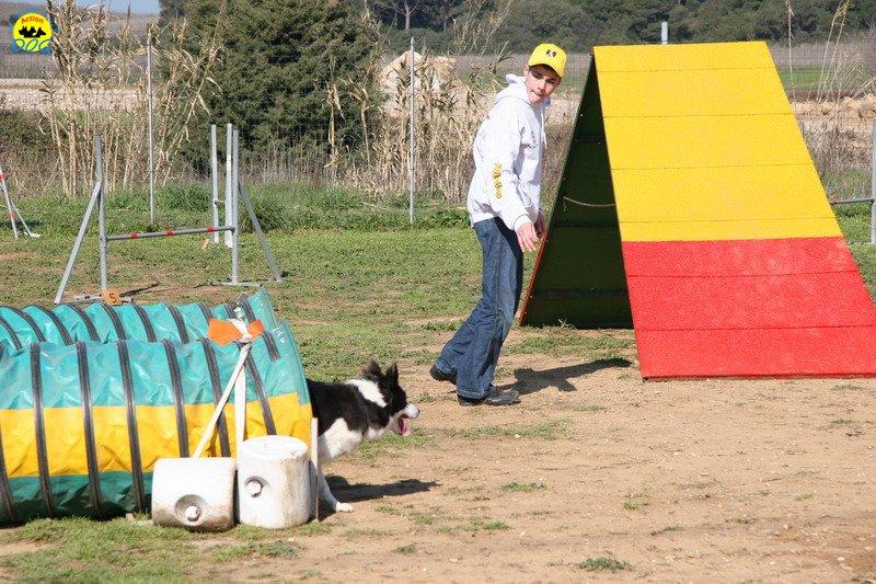 38-agility-dog-24-02-08.jpg