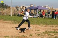 19-agility-dog-24-02-08.jpg