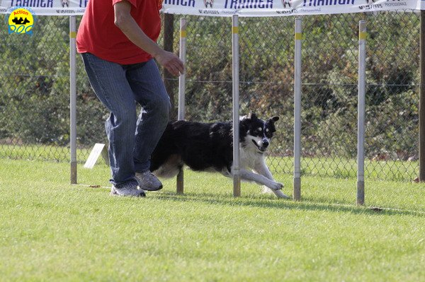 025-agilitydog-gpt-empoli-27set09