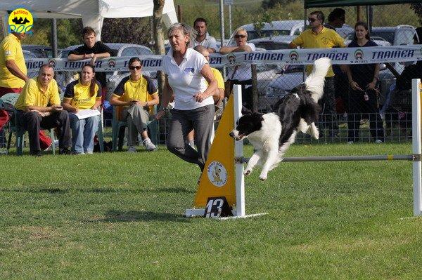 027-agilitydog-gpt-empoli-27set09