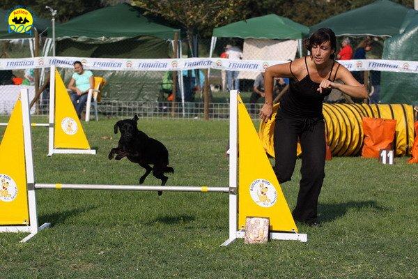 043-agilitydog-gpt-empoli-27set09