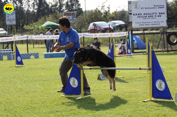 044-agilitydog-gpt-empoli-27set09