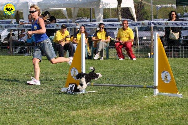 057-agilitydog-gpt-empoli-27set09