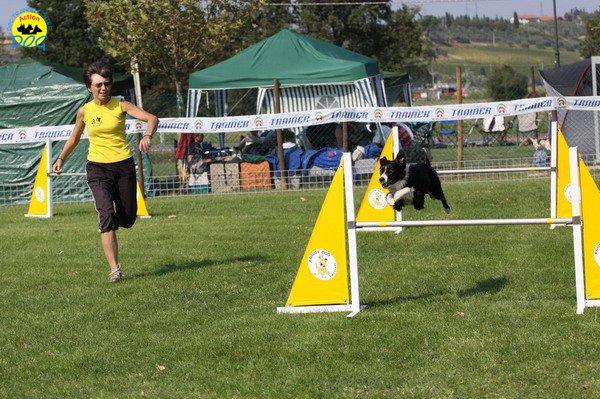 097-agilitydog-gpt-empoli-27set09