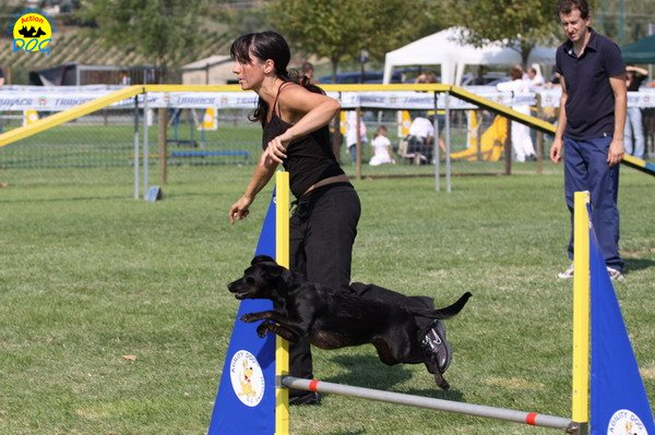 110-agilitydog-gpt-empoli-27set09