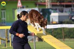 011-agilitydog-gpt-empoli-27set09
