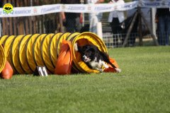 020-agilitydog-gpt-empoli-27set09
