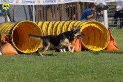 023-agilitydog-gpt-empoli-27set09