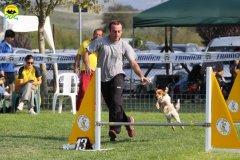 039-agilitydog-gpt-empoli-27set09