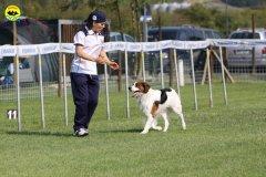 072-agilitydog-gpt-empoli-27set09