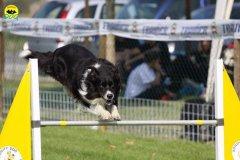 076-agilitydog-gpt-empoli-27set09