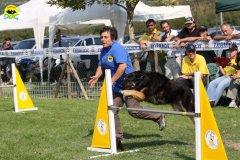 095-agilitydog-gpt-empoli-27set09