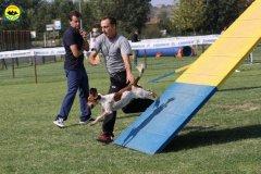 104-agilitydog-gpt-empoli-27set09