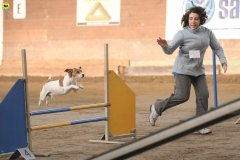 Flip il Cane Attore