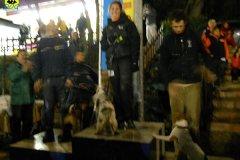 06-gara-agility-perugia-marzo2011