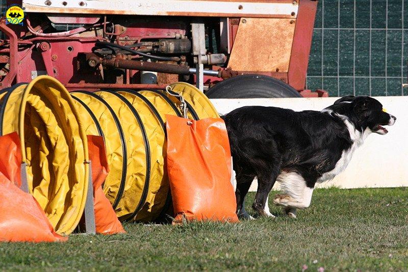 gp-tuscany-15-02-2009-0028.jpg