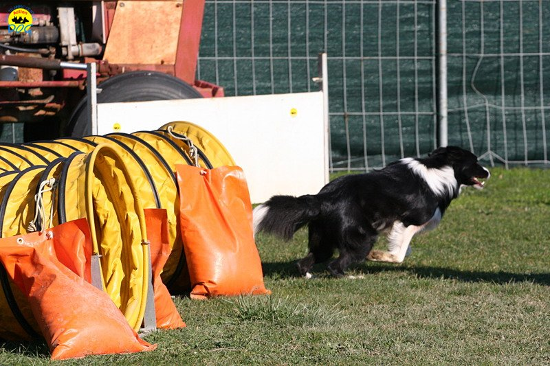 gp-tuscany-15-02-2009-0035.jpg