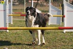 gp-tuscany-15-02-2009-0032.jpg